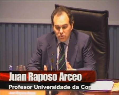 Juan Raposo Arceo, Profesor da Universidade da Coruña (UDC)